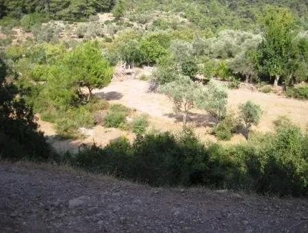 Orhaniye Köyünde Doğa İçinde 400 M2 Yatırım İçin Uygun Arsamız Satılık