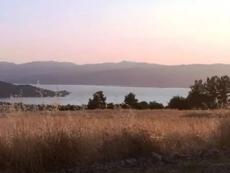 Köyceğiz İlçesi Zeytinalanı Mahallesi 19000M2 Satılık Göl Manzaralı Arsa