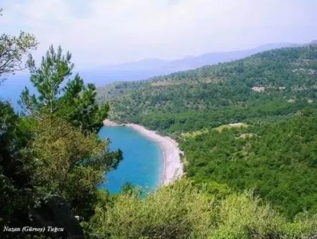 Datça Merkezinden 60 Km Uzaklıkta Satılık 100000M2 Arsa Üzerine Kurulu Tatil Köyü